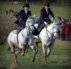 Hunting Sidesaddle!!! Can you imagine how hard this would be!!  Respect!