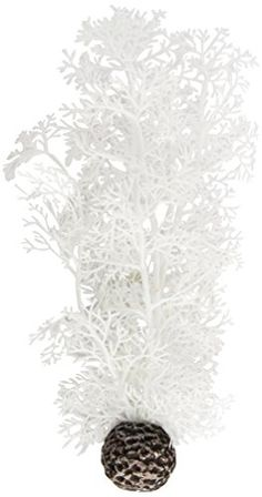 biOrb Sea Fan, Medium, White Biorb http://www.amazon.co.uk/dp/B006M9FC2O/ref=cm_sw_r_pi_dp_2mwIwb09NZH3X