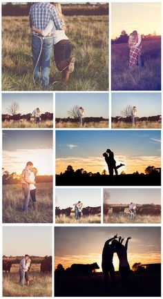 Farm engagement photos, cows- Memories Captured by Brenda