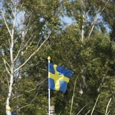 Ile Szwecji zostało w Szwecji? (pixabay)