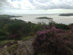 Castle Rock, Rough Island and Hestan Island taken from the top of Mark Hill near Rockcliffe, Dumfries and Galloway. August 2015. B