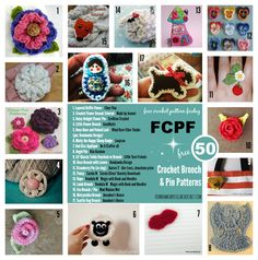 FCPF Round Up Brooch and Pin