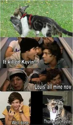 Image uploaded by :). Find images and videos about funny, one direction and louis tomlinson on We Heart It - the app to get lost in what you love. Four One Direction, One Direction Wallpaper, One Direction Quotes, One Direction Imagines, One Direction Pictures, One Direction Fanfiction, Ome Direction, 1d Imagines, Larry Stylinson
