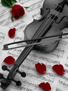 Violin, sheet music & rose petals. Photography of music.