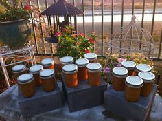 Rustic Chic Shower Favors 20 Raw Organic by RusticChicBodyShop, $140.00