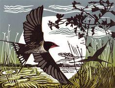 Swallows 2 by Pam Grimmond Illustrator, Linoprint, Wood Engraving, Wildlife Art, Linocut Prints, Gravure, Bird Prints, Bird Art, Painting & Drawing