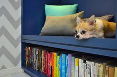 Detalhe da estante de livros | Projeto Unio Arquitetura #unioarquitetura Home Office, Corgi, Photo And Video, Animals, Instagram, Books, Arquitetura, Animaux, Home Offices