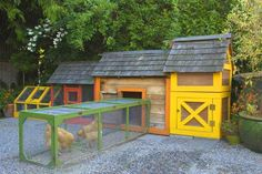 A brightly colored chicken coop houses three Buff Orpington hens which are moved around in a bottomless portable pen built from salvaged cedar and hardware cloth. This way, the chickens' tasks of fert(Chicken Backyard Buff Orpington) Chicken Coup, Best Chicken Coop, Backyard Chicken Coops, Building A Chicken Coop, Chickens Backyard, Outside Playhouse, Veg Garden, Veggie Gardens, Urban Chickens