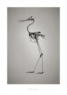 "BC2  Print ""Himantopus mexicanus"" (Rype)"