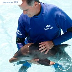 SeaWorld, Hubbs SeaWorld Research Institute and NOAA combined their efforts to rescue this adorable dolphin calf. The experts believe he was less than five days old at the time of the rescue because his umbilical cord was still attached and he weighed less than 35 pounds! #365DaysOfRescue