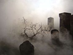Foggy graveyard.