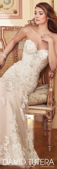 Wedding Dress by David Tutera for Mon Cheri 2017 Bridal Collection | Style No. » 117284 Danae