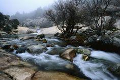 Sierra de Guadarrama 24 de Mayo Día Europeo de los Parques Nacionales Gracias a: La belleza de los 15 parques nacionales de España | El Viajero | EL PAÍS
