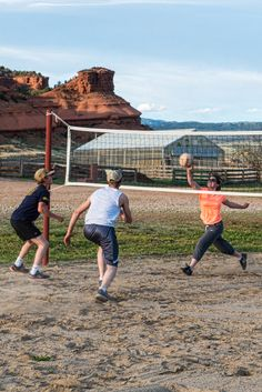 how about a friendly game of volleyball?