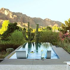 Infinity pool with built in chaise (Sunset Dream Garden Award, 2008-2009)