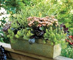 Growing Gardening: Tips To Find Right Place Of Your Container Garden #container #gardening #place