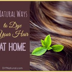 Natural Herbal Hair Dyes  While most herbal material can be made into a strong tea and rinsed through the hair, there are a few more steps to ensure it lasts longer.