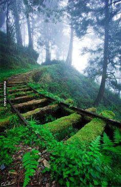 Nature will conquer.