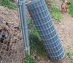 prevent dog escapes how to reinforce chain link fences tools and materials to dog
