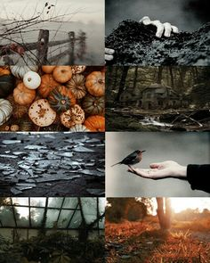 Over The Garden Wall Aesthetic  But where have we come, and where shall we end?  If dreams can't come true, then why not pretend?