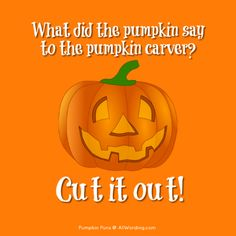 funny pumpkin sayings - Google Search Funny Women Quotes, Mom Quotes, Happy Quotes, Funny Sayings, Son Birthday Quotes, Happy Birthday Sister, Birthday Images, Flirting Quotes For Him, Flirting Humor
