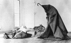 """.""""Me gusta América y a América le gusto yo"""" (1974) de Joseph Beuys"""