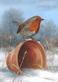 """""""Winter Robin"""" -- by Carl Whitfield Robin Pictures, Pictures To Paint, Art Pictures, Winter Painting, Winter Art, Robin Bird, Bird Artwork, All Birds, Bird Drawings"""
