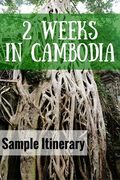Sample itinerary for two weeks in Cambodia