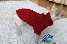 Ønsker du en varm Julegenser til din hund? - Red Wool Sweater. Pris: 299,-