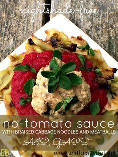 Braised Turkey Meatballs With Quick Tomato Sauce Recipe — Dishmaps