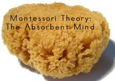 Montessori Theory: The Absorbent Mind Montessori Theory, Sharing Economy, Water Balloons, Pool Cleaning, Tossed, No Worries, Parenting, Ethnic Recipes, Desserts