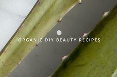 6 Organic DIY Beauty Recipes