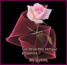 An animated gif. Make your own gifs with our Animated Gif Maker. Flowers Gif, Beautiful Rose Flowers, Pretty Roses, Happy Morning, Good Morning Good Night, Happy Day, Happy Tuesday, Morning Blessings, Glitter Graphics
