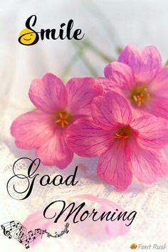 Good Morning Good Morning Beautiful Pictures, Good Morning Images Flowers, Good Morning Inspiration, Good Morning Images Hd, Good Morning Gif, Good Morning Messages, Good Morning Greetings, Funny Morning, Morning Pics
