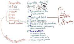 Acyanotic vs Cyanotic Congenital Heart Defects | Sketchy Medicine