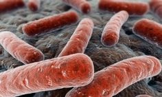 Superbugs may have met their match. Researchers have developed a coating that attracts and kills bacteria, even those resistant to antibiotics, and can be used to keep biomedical products sterile.