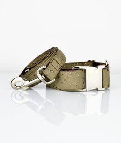 Brott dog collar and leash textura Cava