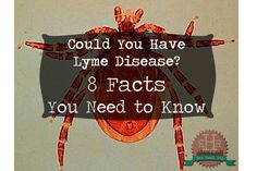 Lyme Disease - Symptoms and Causes. Some of this info will shock you!!