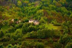 Rodopa Mountain - Bulgaria   родопи - Google Търсене