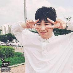 BlockBHive Po Block B, Pyo Jihoon, Pop Bands, Cute Korean, Supreme, Photo Galleries, Idol, Universe, Husband