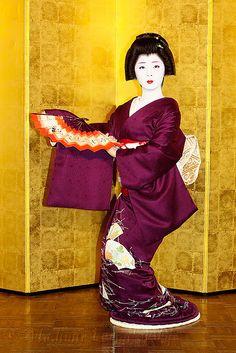 Geiko Taneju (Miyagawacho)