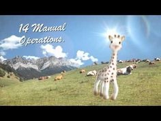 Production of Sophie la Girafe Sophie Giraffe, Teething Toys, 50th Anniversary, Baby Gear, New Moms, Baby Love, Babyshower, World, Kids