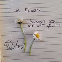 Image about quotes in Too daring words by Night Angel grafika flowers, quote, and grunge Tumblr Feed, Flower Aesthetic, Aesthetic Grunge, What You Eat, Soft Grunge, Pastel Grunge, Decir No, Me Quotes, Cheesy Quotes