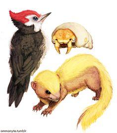 Pokemon In Real Life, Pokemon Sketch, Pokemon Official, Pokemon Sun, Pokemon Fusion, Cartoon Monsters, Pokemon Images, Curious Creatures, Fandom Memes