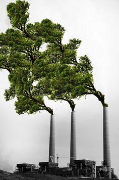 green, tree industry, green industry, ecologic industry, green fabric, green factory, ecologic factory