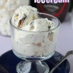 2 Ingredient Ice Cream