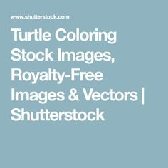 Turtle Coloring Stock Images, Royalty-Free Images & Vectors | Shutterstock