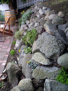 now with sedum! rock wall with sedum Garden Yard Ideas, Garden Spaces, Garden Projects, Hillside Landscaping, Landscaping With Rocks, Landscaping Ideas, Rock Wall Landscape, Landscape Design, Rock Wall Gardens