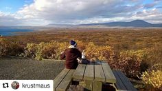 #Repost @krustmaus  Kleine Mittagspause im Thingvellir Nationalpark