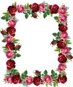 FREE digital vintage rose frame and border (png with transparent background)